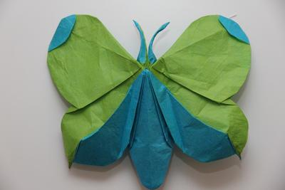 /images/origami/2017/12/Butterfly1.thumbnail.jpg